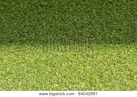 green grass with empty area for text background. Nature background.