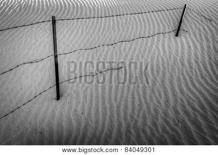 Creeping Sands - Dubai