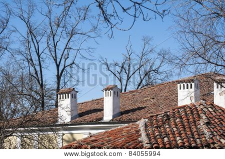 Roofs and chimneys of old houses