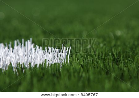 Macro shot of field turf