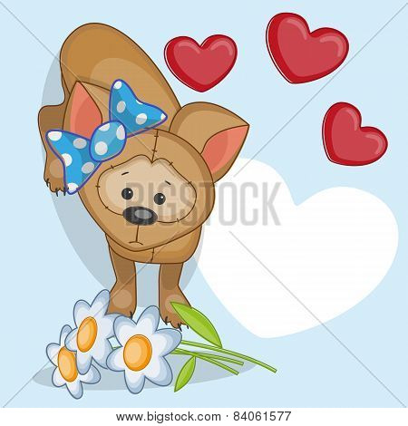 Puppy With Hearts
