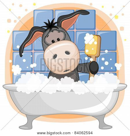 Cute Donkey In Bubble Bath