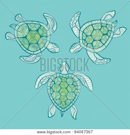 Decorative Turtles In Water