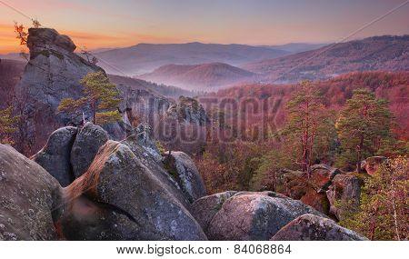 Rocks In Autumn Forest