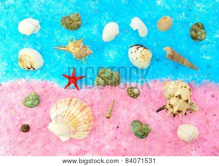 Colored Seashells On A Pink And Blue Sea Salt