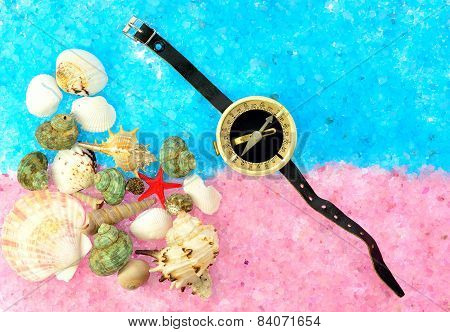 Sea Shells And Compass