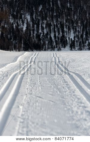 Double Track Nordic Skiing