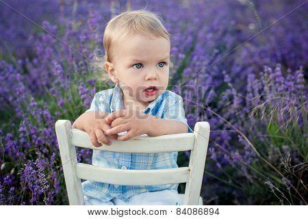 Toddler Baby Boy In A Lavender Field