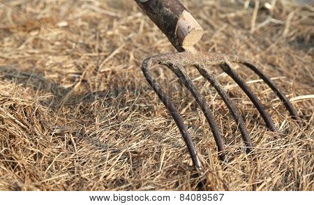 Old Farmer's Pitchfork On Roundbale Farm Hay