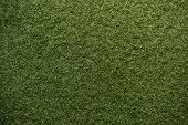 picture of grass area  - green grass with empty area for text background - JPG