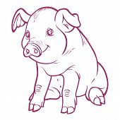 pic of piglet  - Funny vector cartoon piglet isolated background - JPG