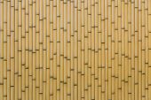 image of partition  - Artificial Yellow Plastic Bamboo Fence that used for a Partition - JPG