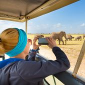 foto of  jeep  - Woman on african wildlife safari - JPG