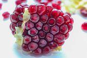 foto of pomegranate  - Pomegranate juice - JPG