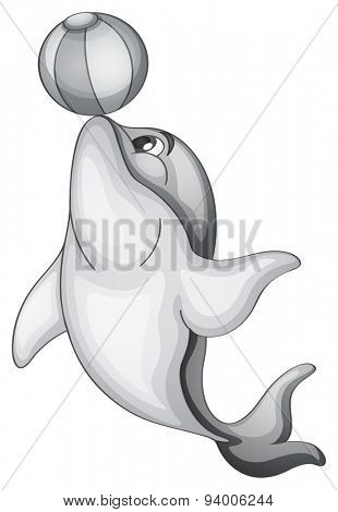 Dolphin playing with beach ball