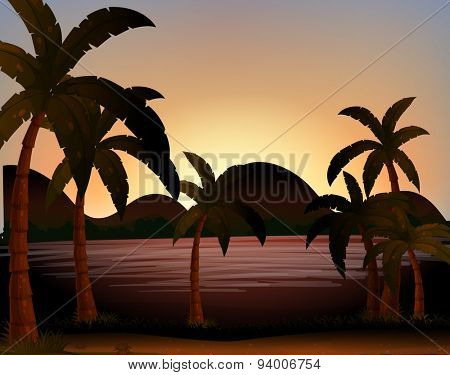 Beach scene with coconut trees on the ground