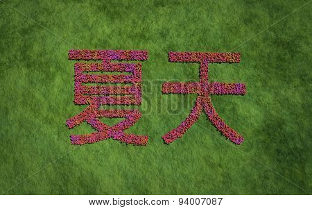 Summer Chinese Text Flower With Grass Background