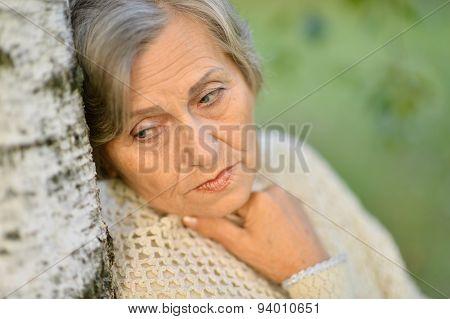 Old Lady Near The Tree