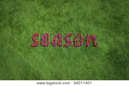 Season Text Flower With Grass Background