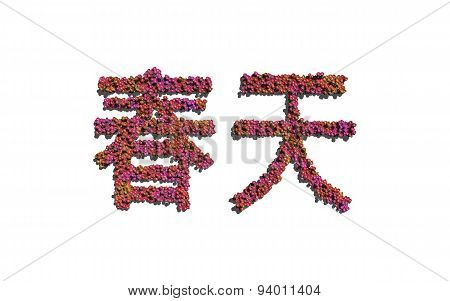 Spring Chinese Text Flower With White Background