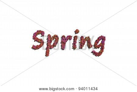 Spring Text Flower With White Background