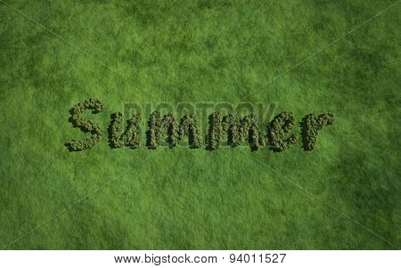 Summer Text Tree With Grass Background