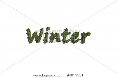 Winter Text Tree With White Background