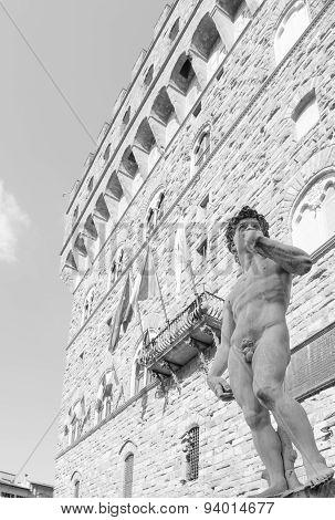 Michelangelo's David In The Piazza Della Signoria