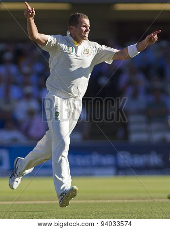 LONDON, ENGLAND - July 19 2013: Peter Siddle celebrates taking the wicket of Kevin Pietersen during day two of the Investec Ashes 2nd test match, at Lords Cricket Ground on July 19, 2013