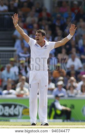 MANCHESTER, ENGLAND - August 02 2013: James Anderson makes an unsuccessful appeal for a wicket during day two of  the Investec Ashes 3rd test match at Old Trafford Cricket Ground, on August 02, 2013