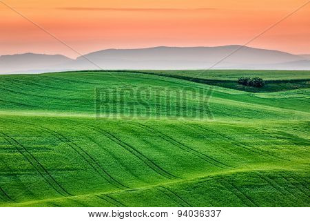 Moravian rolling landscape on sunrise. South Moravia, Czech Republic