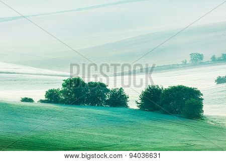 Rolling landscape of green fields in South Moravia, Czech Republic in early morning