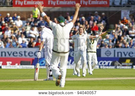 CHESTER LE STREET, ENGLAND - August 09 2013: Peter Siddle appeals for the wicket of Matt Prior during day one of the Investec Ashes 4th test match at The Emirates Riverside Stadium