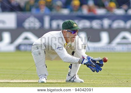 CHESTER LE STREET, ENGLAND - August 11 2013: Brad Haddin catches the ball during day three of the Investec Ashes 4th test match at The Emirates Riverside Stadium, on August 11, 2013