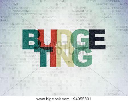 Finance concept: Budgeting on Digital Paper background