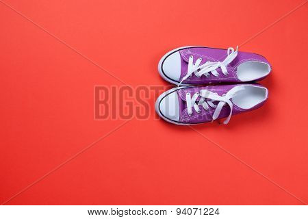 Violet Classic Gumshoes