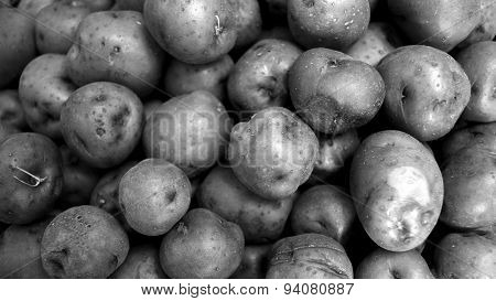 Black And White Red Potato Background In Widescreen