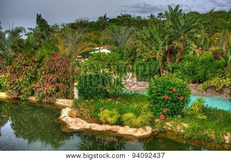 River In The Park With Palms, Tenerife, Canarian Islands