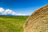 stock photo of hay bale  - storm is coming on a field with hay bales - JPG