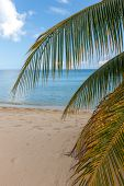 pic of foreground  - Beach on the tropical island - JPG