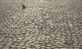 image of cobblestone  - Abstract background of old cobblestone pavement close up - JPG