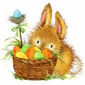 image of easter eggs bunny  - Easter bunny and Easter egg with garden decor - JPG