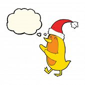 image of crazy hat  - cartoon bird wearing xmas hat with thought bubble - JPG