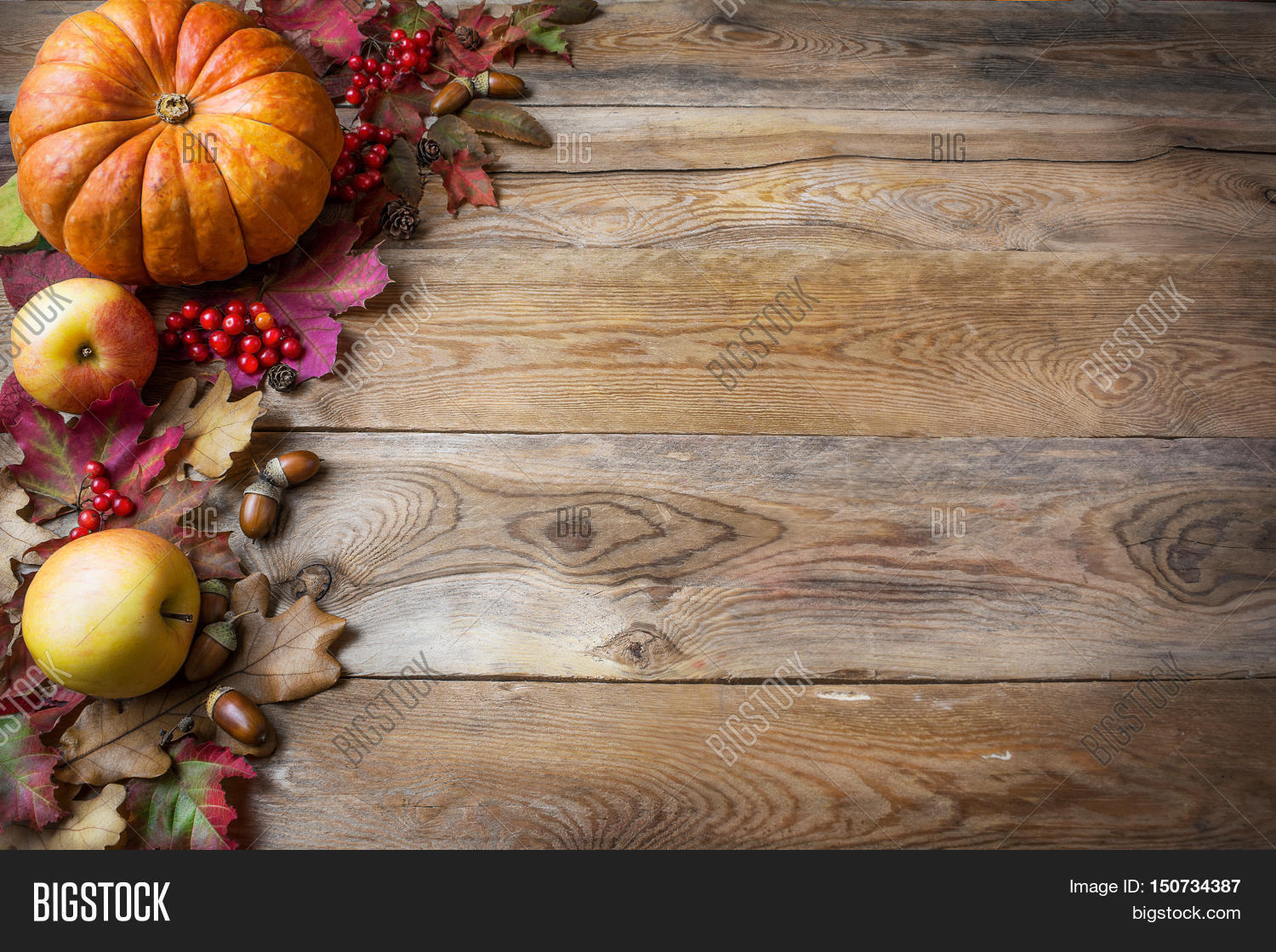 Thanksgiving Or Fall Greeting With Pumpkins And Fall