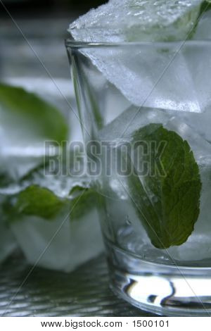 Mint Leaves In Ice Cubes
