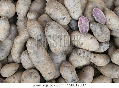 Background Of Raw Potatoes