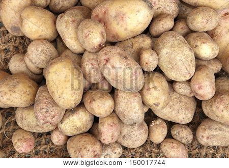 Background Of Raw Potatoes For Sale In The Grocery
