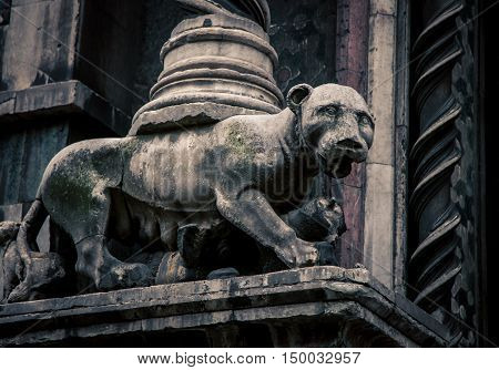 Stone lioness in front of the catredral in  florence italy