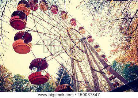 seesaw in an autumn park