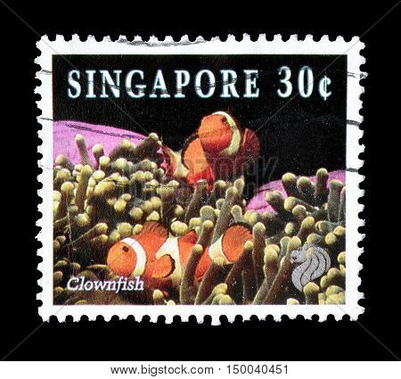 SINGAPORE - CIRCA 1994 : Cancelled postage stamp printed by Singapore, that shows Clown fish.